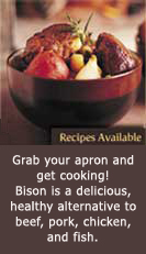 Bison is a delicious, healthy alternative to beef, pork, chicken, and fish.